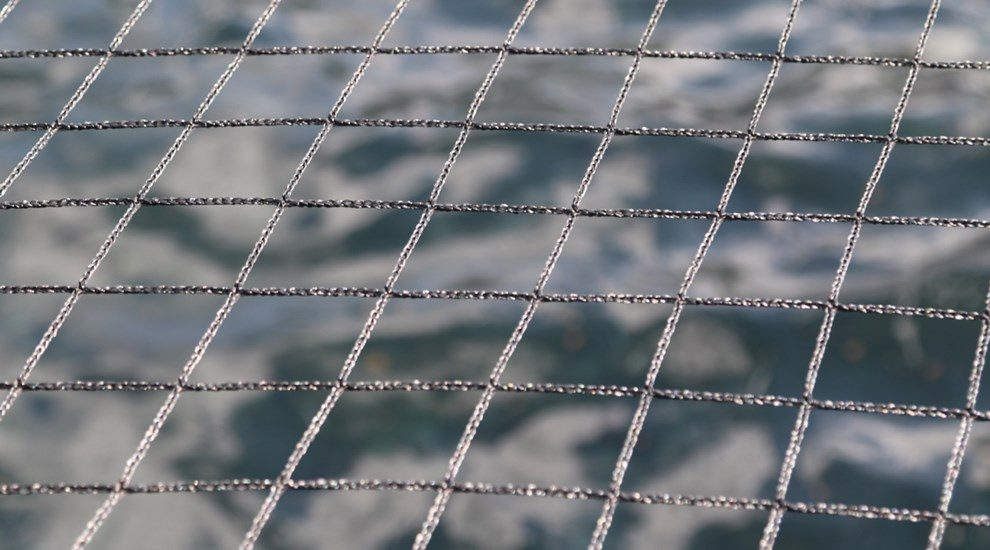 Net with square grids
